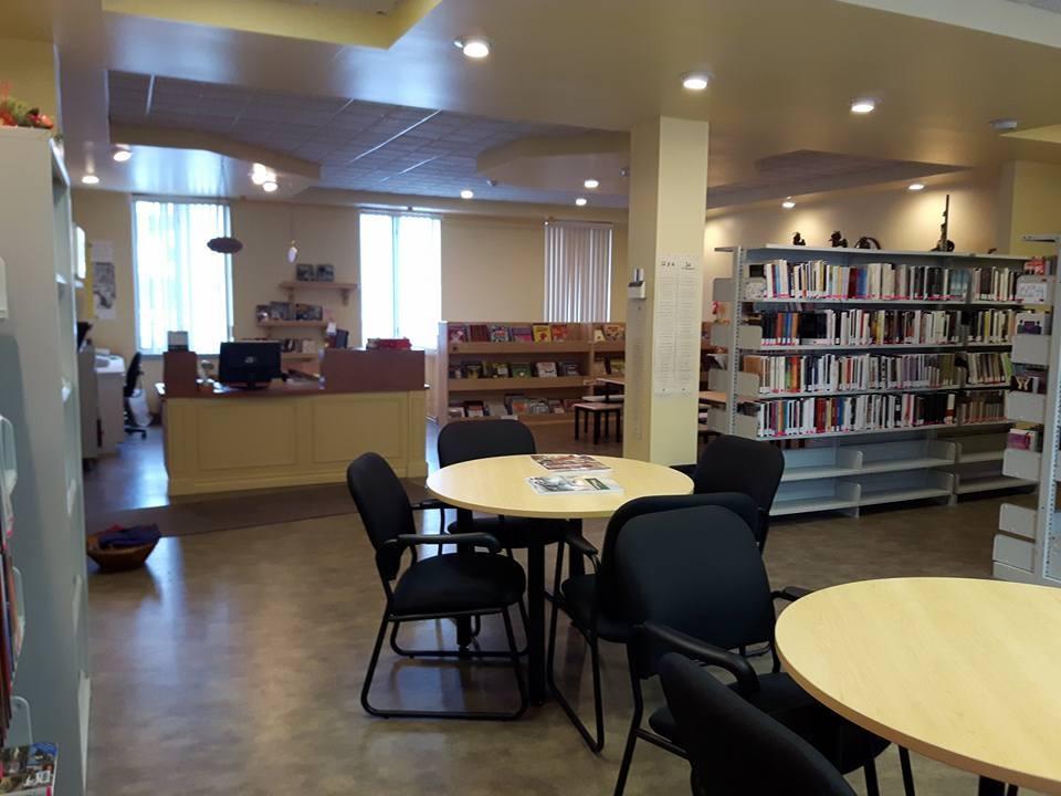 Bibliothèque1 (Auteur : Josée Ouellet)