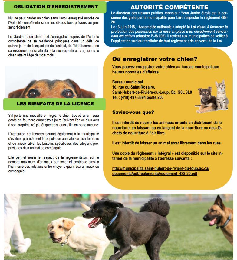 Règlement concernant la garde des animaux 2 (Auteur : Josée Ouellet)